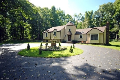 Raritan Twp. Single Family Home For Sale: 127 Cherryville Hollow Rd