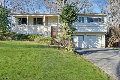 Berkeley Heights Single Family Home For Sale: 80 Ferndale Dr