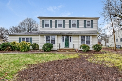 New Providence Single Family Home For Sale: 1724 Springfield Ave