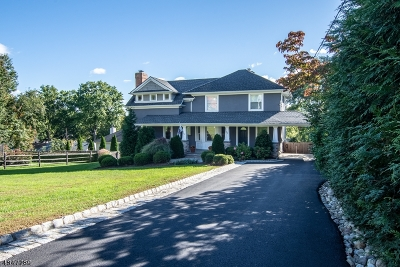 Summit Single Family Home For Sale: 25 Clark St