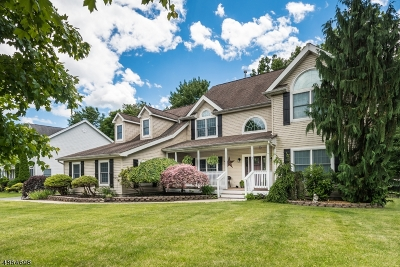 Mount Olive Twp. Single Family Home For Sale: 7 Jennies Ln