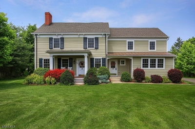 Hillsborough Twp. Single Family Home For Sale: 22 Rouser Way
