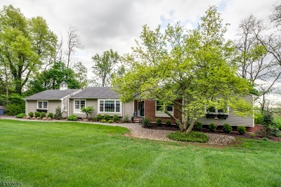 Long Hill Twp Single Family Home For Sale: 1455 Long Hill Rd