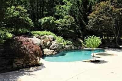 Bernardsville Boro Single Family Home For Sale: 191 Washington Corner Road