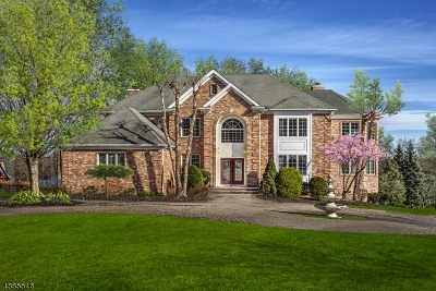 Bernards Twp. Single Family Home For Sale: 14 Green Mountain Dr