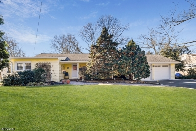 Scotch Plains Twp. Single Family Home For Sale: 320 Roberts Ln
