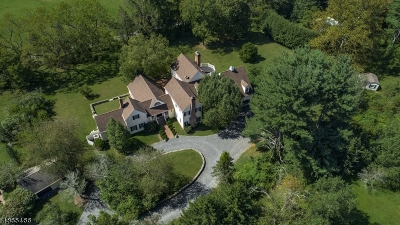 Bedminster Twp. Single Family Home For Sale: 1675 River Rd