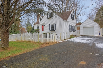 Bernardsville Boro Single Family Home For Sale: 25 Eastern Ave