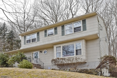 Randolph Twp. Single Family Home For Sale: 68 Brookside Rd