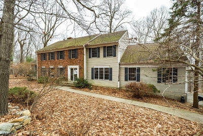 Tewksbury Twp. Single Family Home For Sale: 43 Big Spring Rd