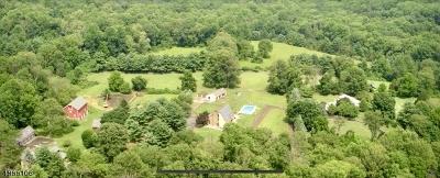 Tewksbury Twp. Single Family Home For Sale: 1012 Califon Cokesbury Road