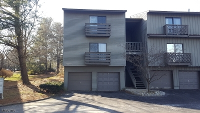 Glen Gardner Boro, Hampton Boro Condo/Townhouse For Sale: 201 Spruce Hills Dr #1