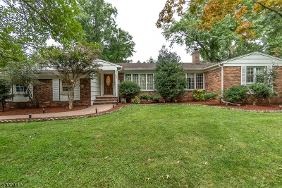Cranford Twp. Single Family Home For Sale: 620 Riverside Dr