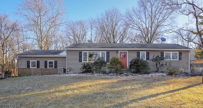 Hillsborough Twp. Single Family Home For Sale: 660 River Rd