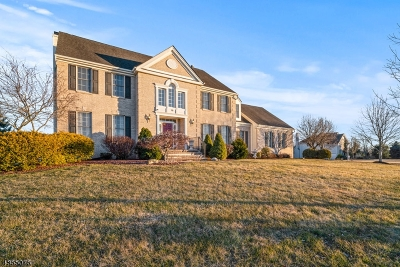Montgomery Twp. Single Family Home For Sale: 10 Day Lily Ct