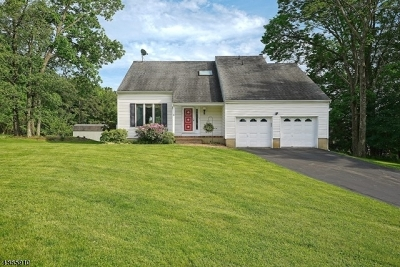 Holland Twp. Single Family Home For Sale: 9 Delaware Dr