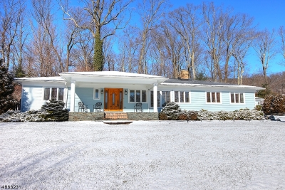 Morristown Town, Morris Twp. Single Family Home For Sale: 5 Raynor Rd