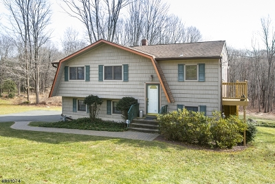 Roxbury Twp. Single Family Home For Sale: 205 Mooney Rd