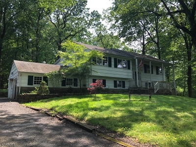Warren Twp. Single Family Home For Sale: 37 King George Rd