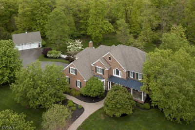 Montgomery Twp. Single Family Home For Sale: 9 Raymond Ln