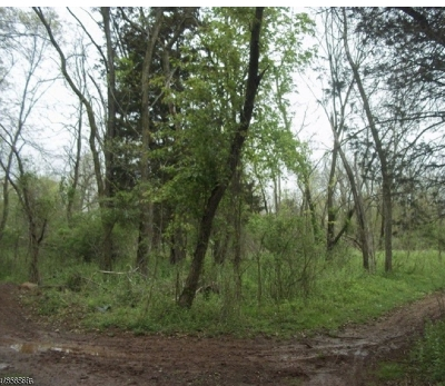 Hillsborough Twp. Residential Lots & Land For Sale: 92 Falcon Rd