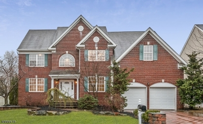 Franklin Twp. Single Family Home For Sale: 16 Treetops Cir