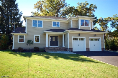 Berkeley Heights Single Family Home For Sale: 679 Plainfield Ave