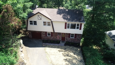 Denville Twp. Single Family Home For Sale: 18 Lafayette Pl