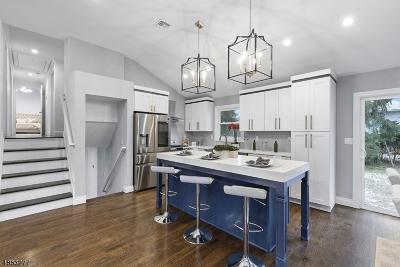 East Hanover Twp. Single Family Home For Sale: 10 Christine Dr