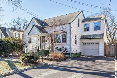 Edison Twp. Single Family Home For Sale: 127 5th St