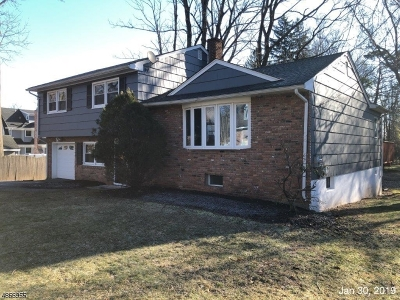 WestField Single Family Home For Sale: 215 Brightwood Ave