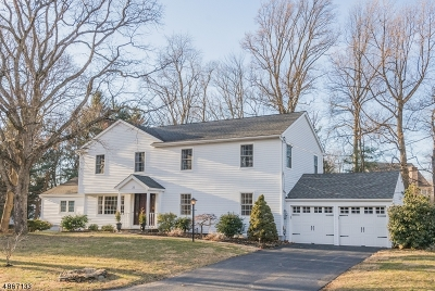 Chatham Twp Single Family Home For Sale: 22 Whitman Dr