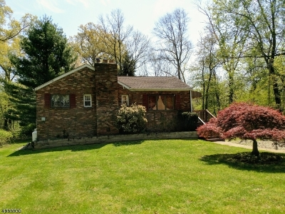 Boonton Twp. Single Family Home For Sale: 9 Overlook Rd