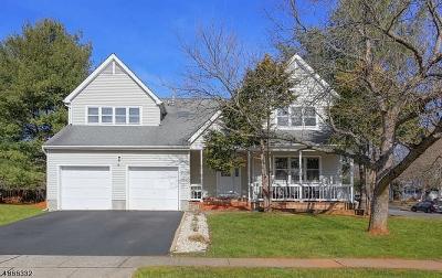 Hillsborough Twp. Single Family Home For Sale: 8 Woodville Ter