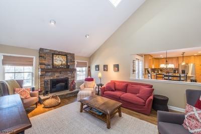 Randolph Twp. Single Family Home For Sale: 1 Blue Bird Ct