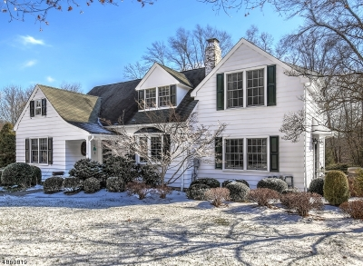 Bernardsville Boro Single Family Home For Sale: 76 Mt Harmony Rd