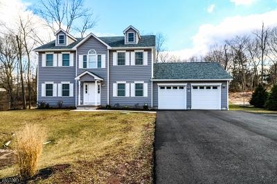 Flemington Boro, Raritan Twp. Single Family Home For Sale: 410 Case Blvd