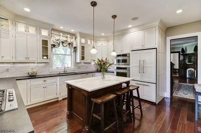 Morristown Town, Morris Twp. Single Family Home For Sale: 7 Perry St