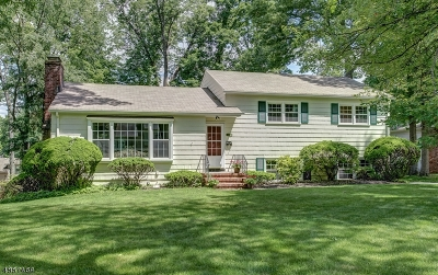 Berkeley Heights Twp. Single Family Home For Sale: 102 Oakland St