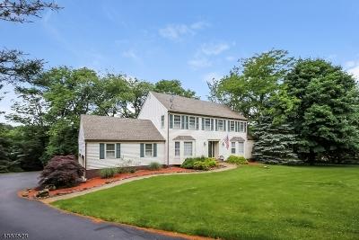 Raritan Twp. Single Family Home For Sale: 5 Wildwood Ct