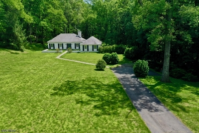Bernardsville Boro Single Family Home For Sale: 10 Turnbull Ln