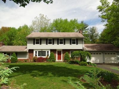 Franklin Lakes Boro Single Family Home For Sale: 1023 High Mountain Rd