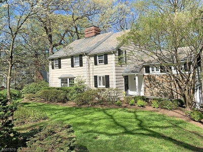 Chatham Boro Single Family Home For Sale: 60 Highland Ave