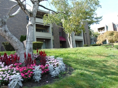 Belleville Twp. Condo/Townhouse For Sale: 836 Main #B