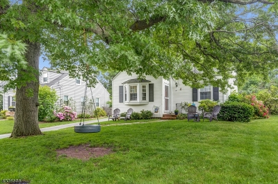 Madison Single Family Home For Sale: 60 Shadylawn Dr