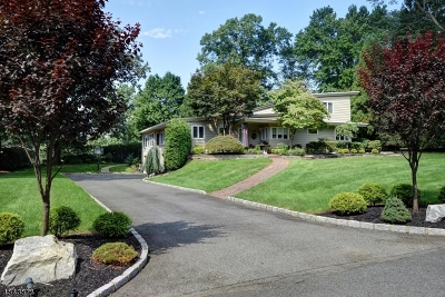 Scotch Plains Twp. Single Family Home For Sale: 2115 Gamble Rd