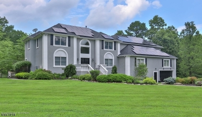 Millstone Twp. Single Family Home For Sale: 8 Mineral Spring Rd