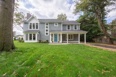 Mountainside Boro Single Family Home For Sale: 227 Summit Rd