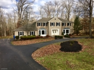 Branchburg Twp. Single Family Home For Sale: 66 Deerfield Trl