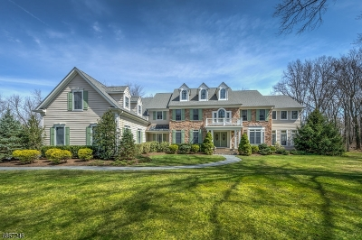 Montgomery Twp. Single Family Home For Sale: 30 Birchwood Dr